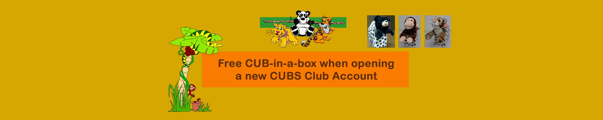 CUBS Club Promotion